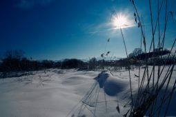 2012-02-21-gazdovsky-dvor41