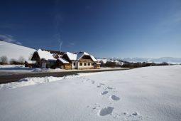 2012-02-21-gazdovsky-dvor5